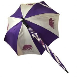 Three Bears Brolly